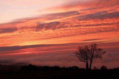 Svítání-nad-mlhou